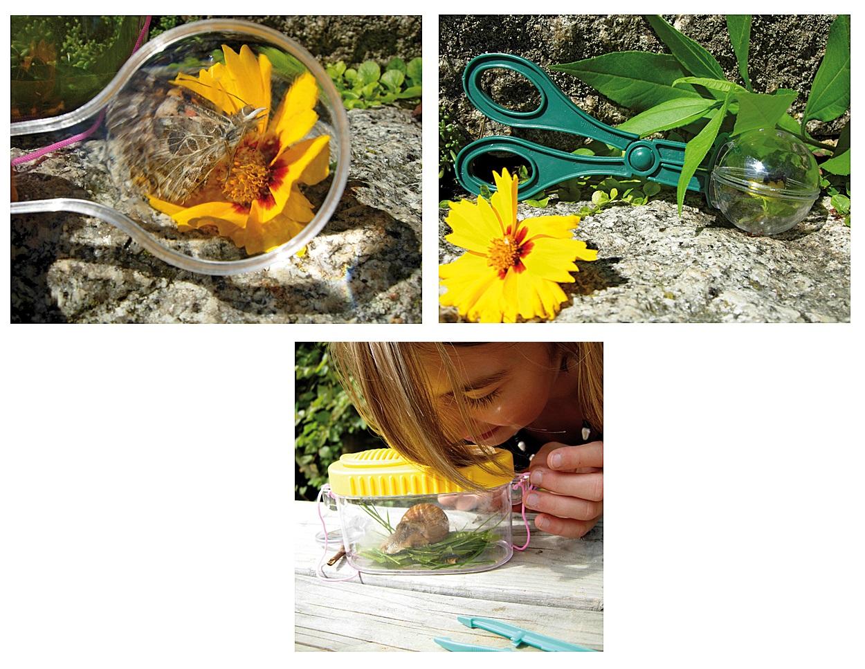 PRO Insekten einfangen Schmetterlinge Schnecken Lupe Frösche beobachten Käfer