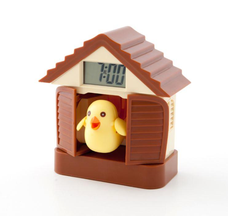 EDEL digitale Kuckucksuhr Uhr Wanduhr Wecker Vögelchen Kuckuck weckt Geschenktip