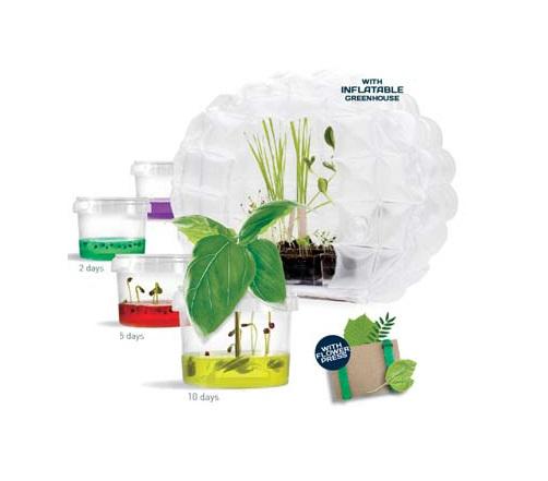 SET Gewächshaus Plantarium Greenhouse mit Gel Samen Töpfen Geschenkidee Geschenk