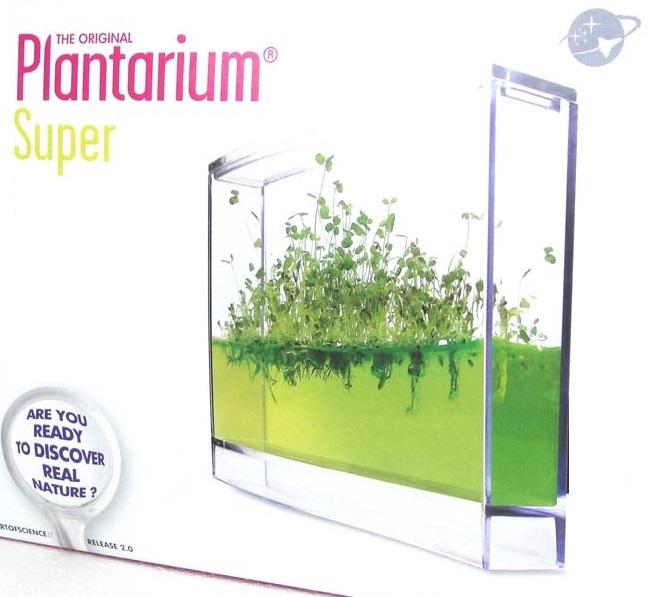 Plantarium Pflanzenwachstum beobachten Mini Indoor Gel Gewächshaus Observatorium