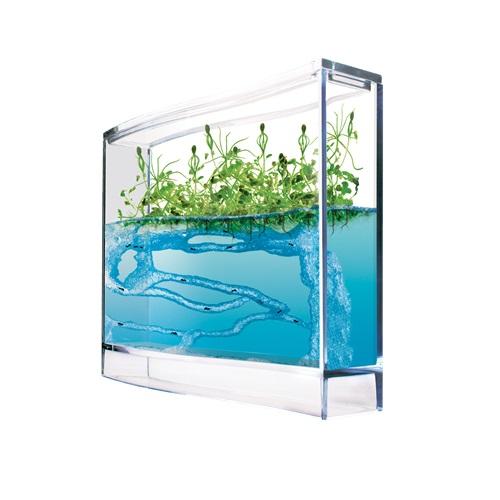 Ameisen Plantage mit Gewächshaus Samen & Ameisen Aquarium