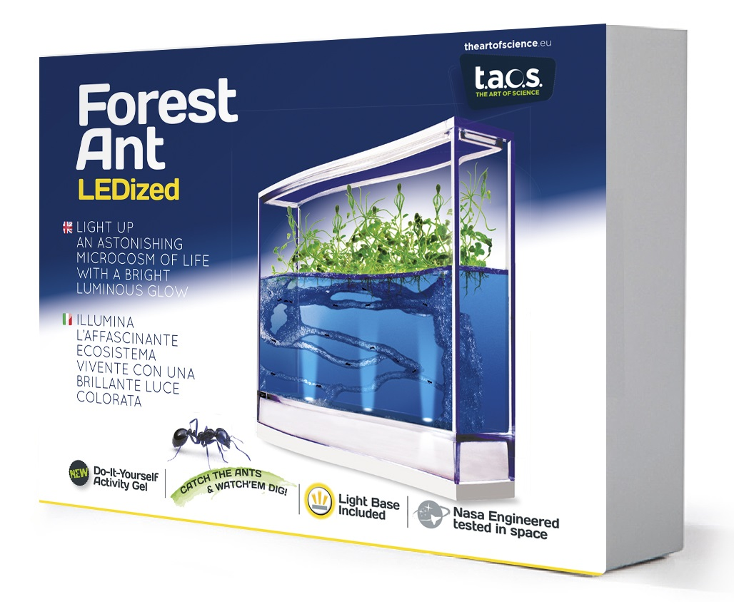 LUXUS LED Ameisenfarm beleuchtet Ameisen Plantage Aquarium mit Gel Geschenkidee