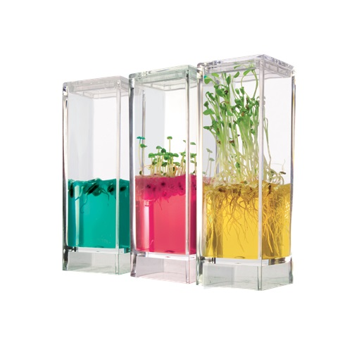 Gewächshaus Reagenzglas 3er Plantarium Ökosystem mit Gel Samen Plantage Geschenk