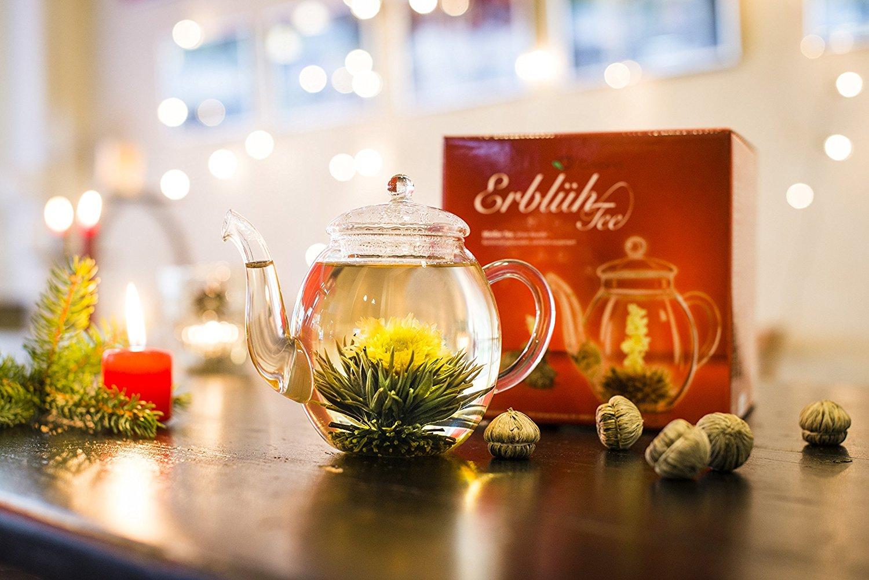 ERLEBNIS Teekanne Glaskanne mit 6 Teebeutel Erblühtee Geschenkset weißer Tee